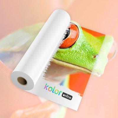 Backlight front print kolor online 250 gr