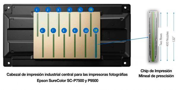 cabezal-Epson-SureColor-SC-P7500-y-P9500