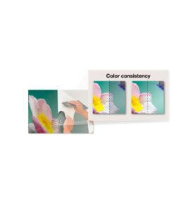 Intensidad de color con la Epson R5000